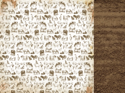 Animals 12x12 Double Sided Scrapbooking Paper