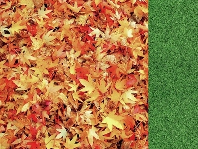 Autumn Leaves 12x12 Double Sided Scrapbooking Paper