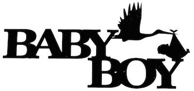 Baby Boy Scrapbooking Laser Cut Title with Stalk