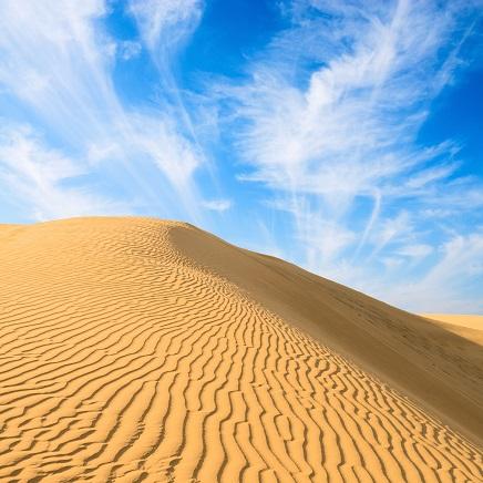 Desert 12x12 Scrapbooking Paper