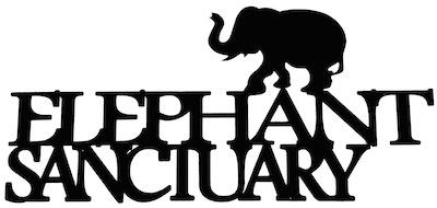 Elephant Sanctuary Scrapbooking Laser Cut Title With Elephant