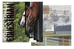 Equestrian 12x12 Double Sided Scrapbooking Paper