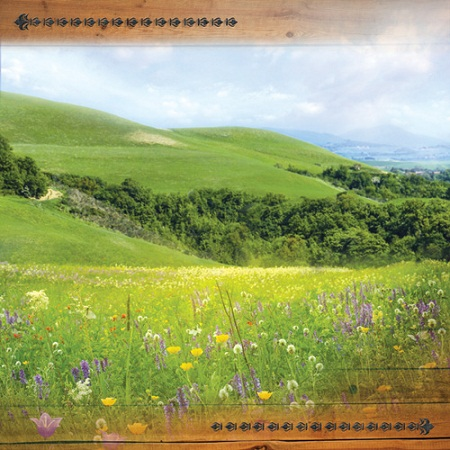 Hill Country 12x12 Scrapbooking Paper