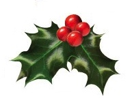 Christmas Holly Die Cut Scrapbooking Sticker