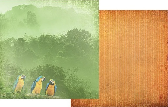 Macaws 12x12 Double Sided Scrapbooking Paper