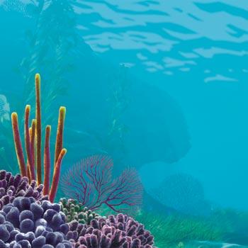 Sea World Scrapbooking