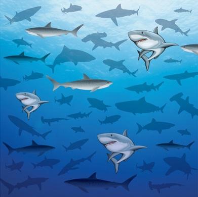 Sharks 12x12 Scrapbooking Paper