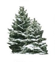 Snowy Trees Die Cut Scrapbooking Sticker