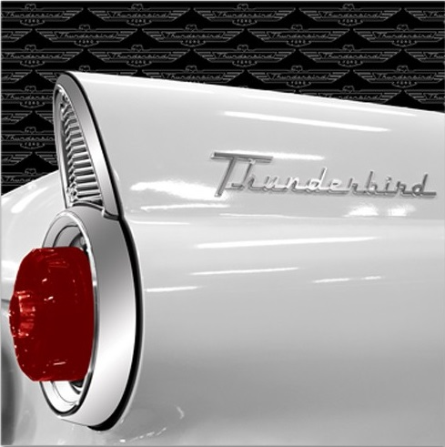 Thunderbird 12x12 Scrapbooking Paper with Foil