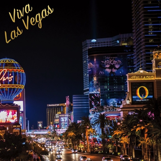 Viva Las Vegas 12x12 Scrapbooking Paper