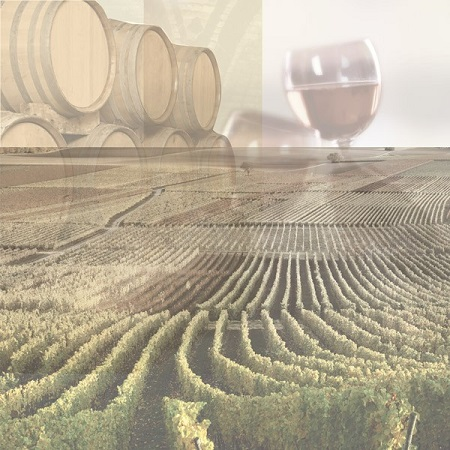 Wine Country Collage 12x12 Scrapbooking Paper