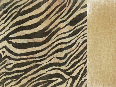 Zebra 12x12 Double Sided Scrapbooking Paper