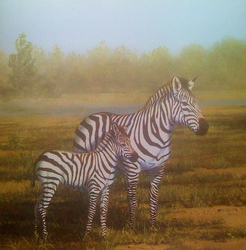 Zebras 12x12 Scrapbooking Paper