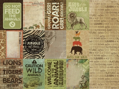 Zoo 12x12 Double Sided Scrapbooking Paper