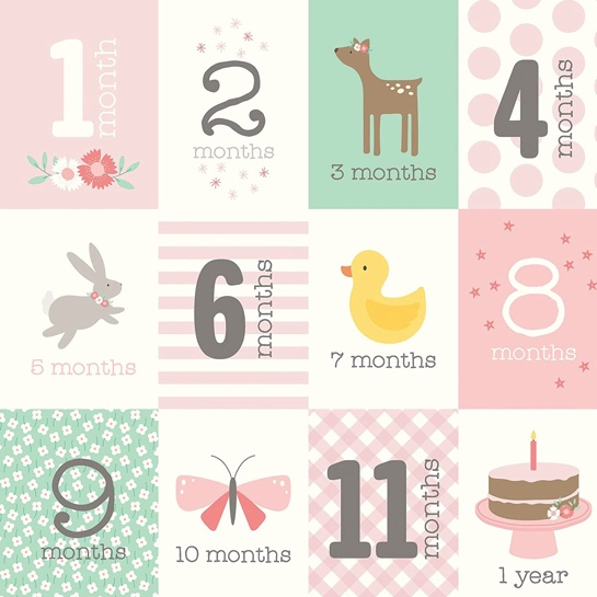 Baby Girl Months Double Sided 12x12 Scrapbooking Paper