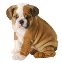Boxer Puppy Scrapbooking Die Cut