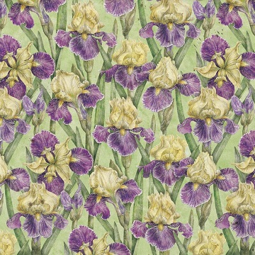 Cottage Garden Iris 12x12 Scrapbooking Paper
