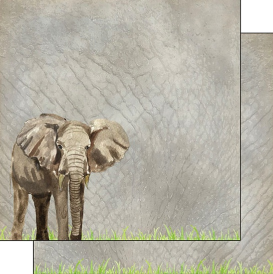 Elephant Safari 12x12 Double Sided Scrapbooking Paper