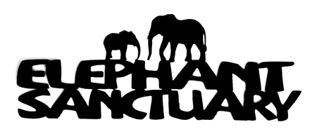 Elephant Sanctuary Scrapbooking Laser Cut Title with Elephants