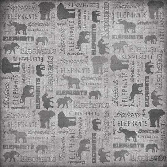 Elephants 12x12 Scrapbooking Paper