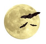 Full Moon and Bats Scrapbooking die cut Sticker