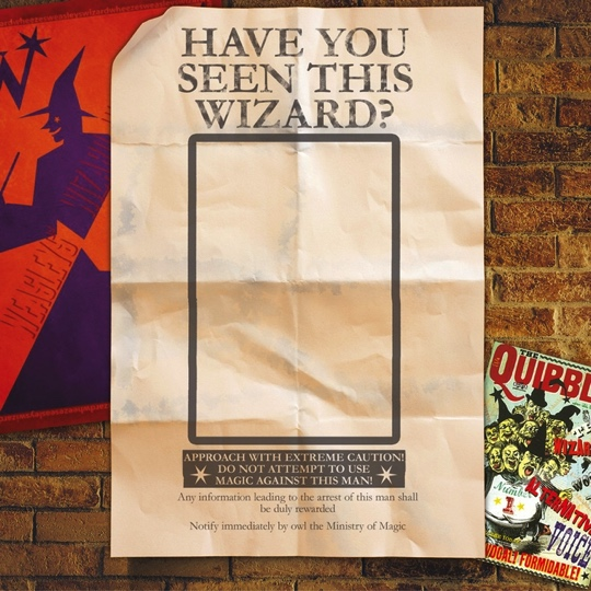 Harry Potter Have You Seen This Wizard 12x12 Scrapbooking Paper