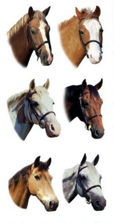 Horses Scrapbooking Mini Stickers