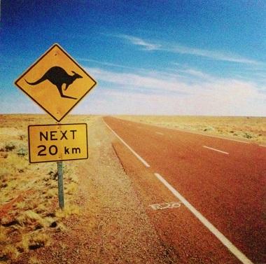 Kangaroo Sign 12x12 Scrapbooking Paper