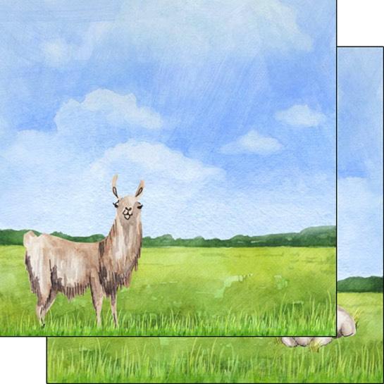 Llama Safari 12x12 Double Sided Scrapbooking Paper