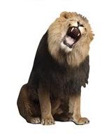 Lion Die Cut Scrapbooking Sticker