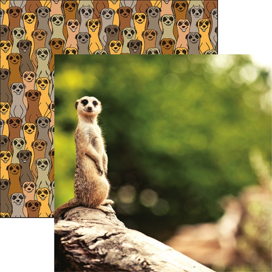 Meerkat Double Sided 12x12 Scrapbooking Paper