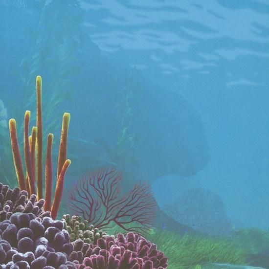 Nemo Underwater 12x12 Scrapbooking Paper