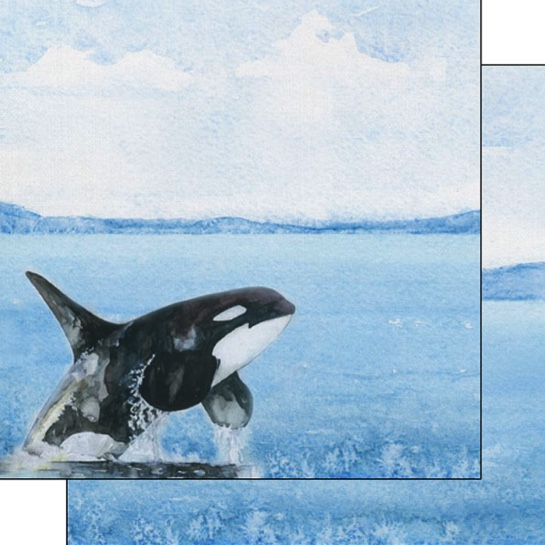 Orca Safari 12x12 Double Sided Scrapbooking Paper