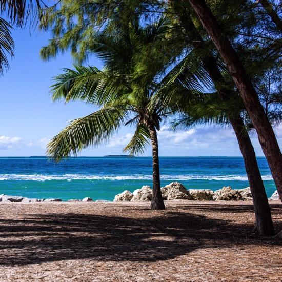 Paradise Beach 12x12 Scrapbooking Paper