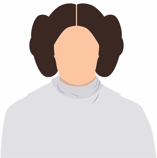 Princess Leia Star Wars 12x12 Scrapbooking Paper