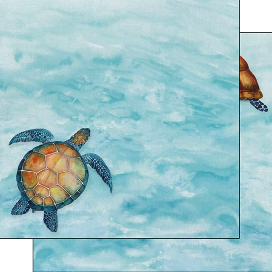Sea Turtle Safari 12x12 Double Sided Scrapbooking Paper