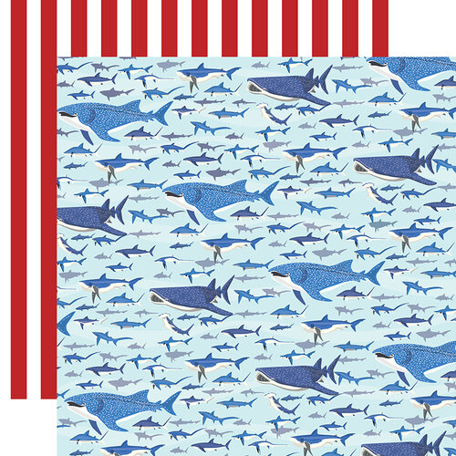 Shark Swim Double Sided 12x12 Scrapbooking Paper