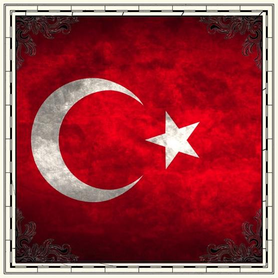 Turkey Flag 12x12 Scrapbooking Paper
