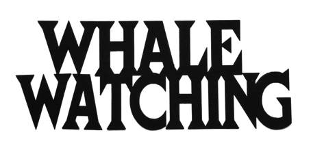 Whale Watching Scrapbooking Laser Cut Title