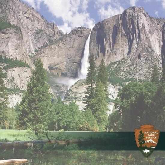 Yosemite 12x12 Scrapbooking Paper